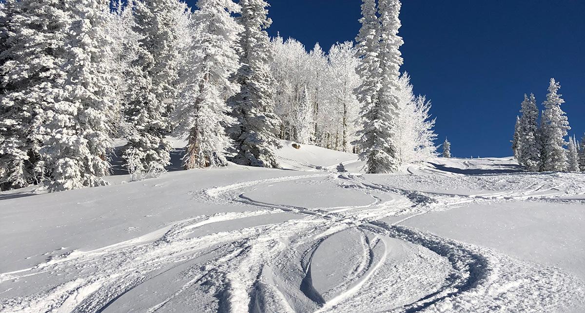 pathways-snow
