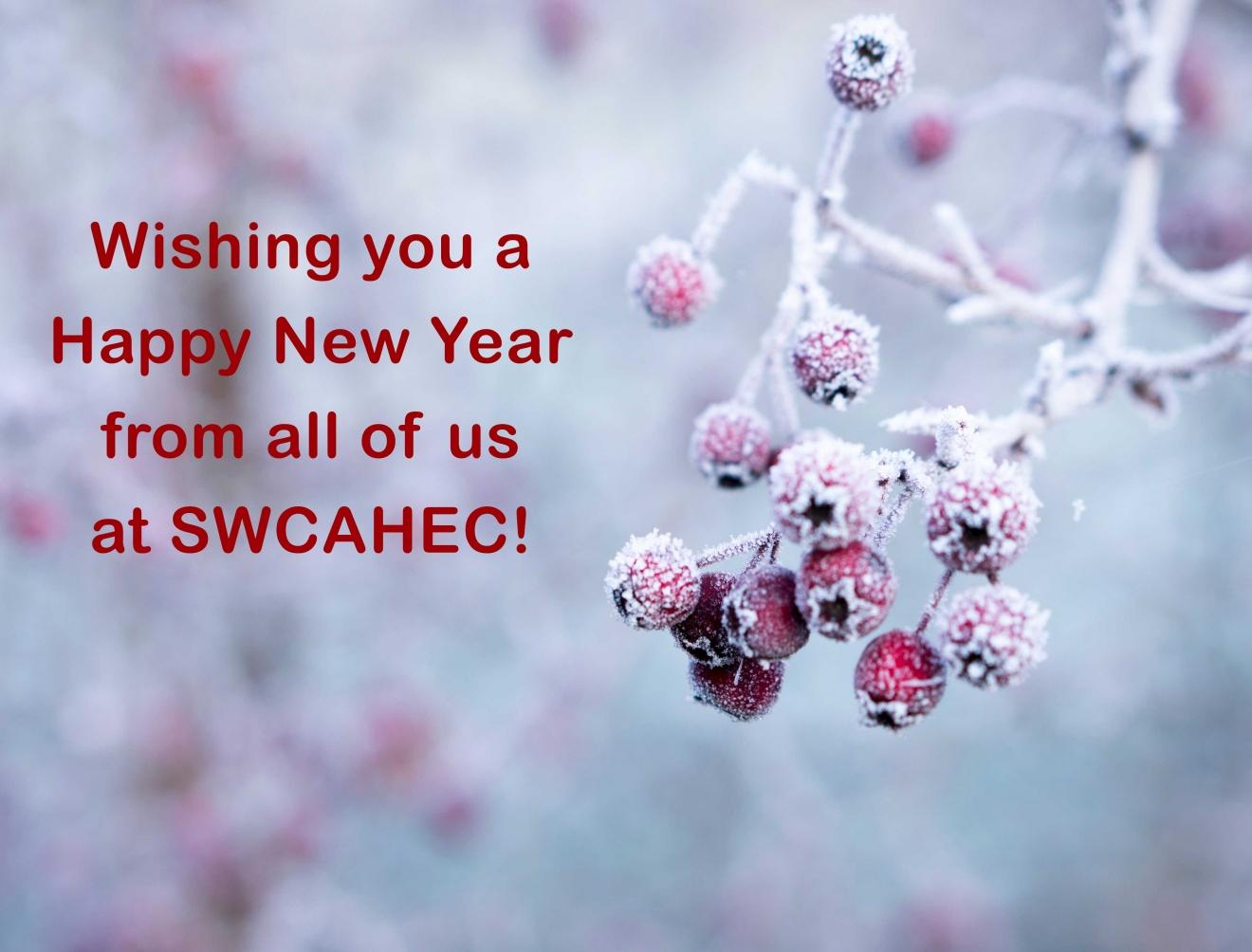 Ahec-holiday-card2